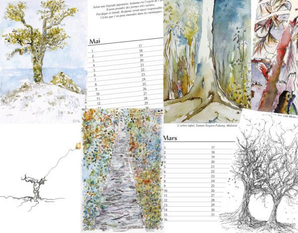 Montage calendrier des arbres, dessins à l'encre aquarelle, techniques mixtes,, Isabelle FLourac