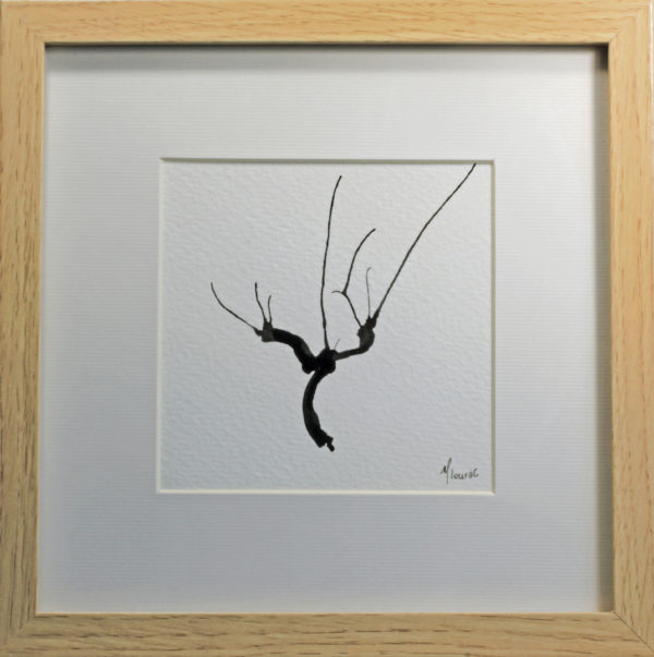 Cep de vigne à l'encre de Chine - Dessin Isabelle Flourac