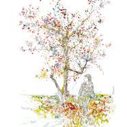 L'arbre de Nara