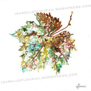 Feuilles I Histoires de Vigne - Isabelle Flourac - Dessin à l'encre inspiré par le Vignoble de l'Atrie