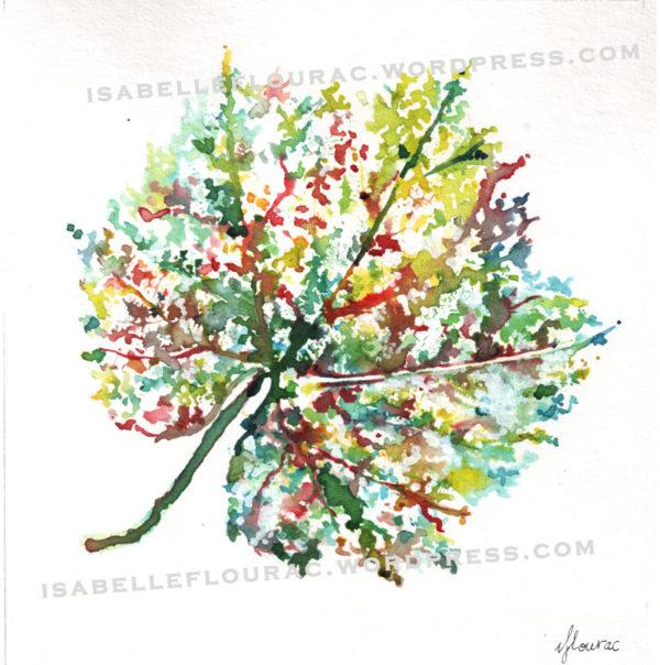 Feuilles III Histoires de Vigne - Isabelle Flourac - Dessin à l'encre inspiré par le Vignoble de l'Atrie