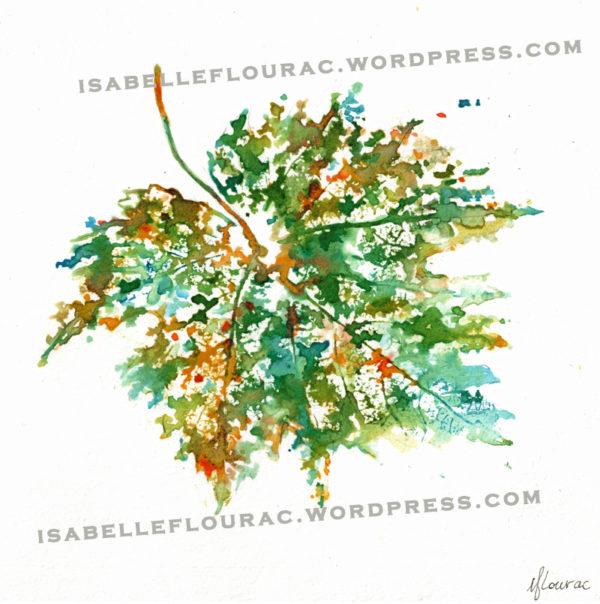 Feuilles VI Histoires de Vigne - Isabelle Flourac - Dessin à l'encre inspiré par le Vignoble de l'Atrie